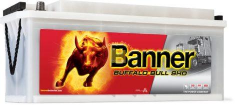 BANNER Buffalo Bull SHD 12V 170Ah 1000A  teherautó akkumulátor